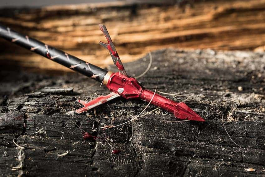 best broadheads for hunting