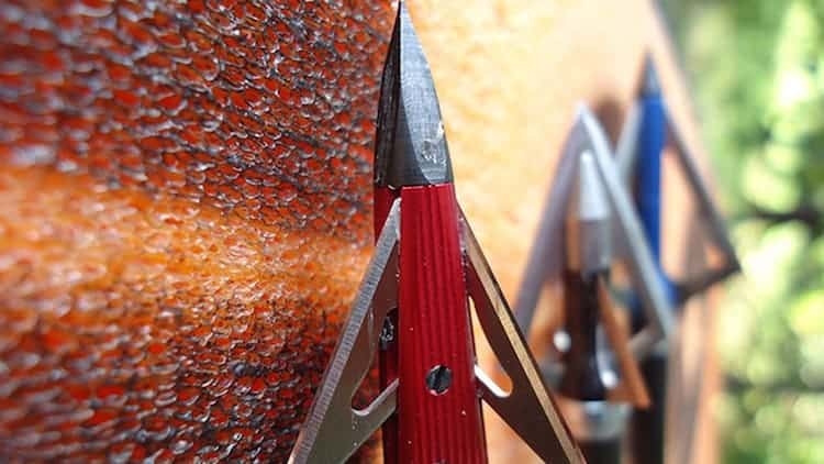 how to sharpen broadheads 2