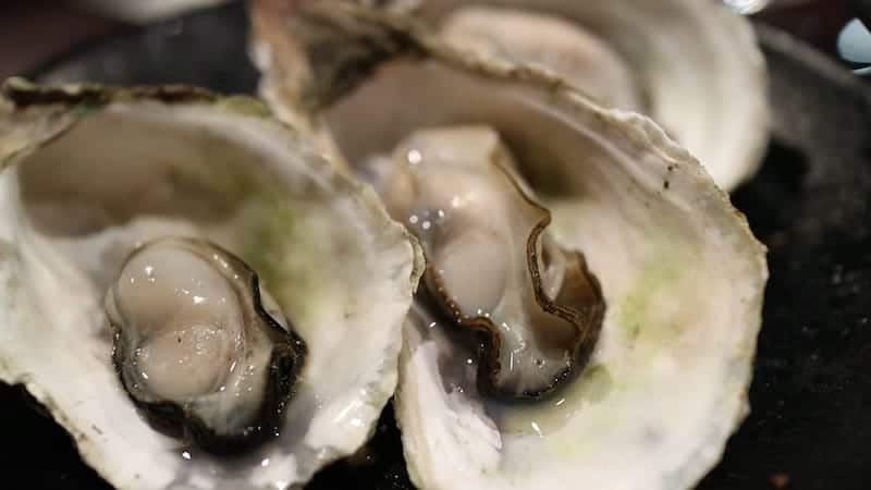 oyster-how-to-shuck-featured