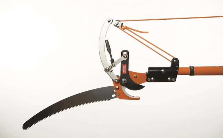 manual-pole-saw-pruner