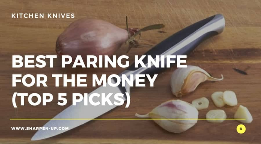 Best Paring Knife For The Money in 2019: Reviews with Comparison