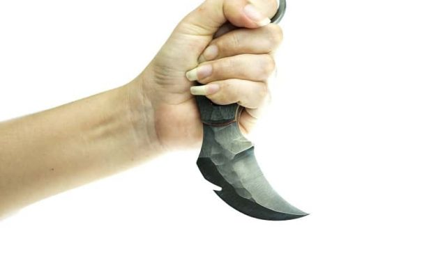 Karambit vs. Nakiri Knife