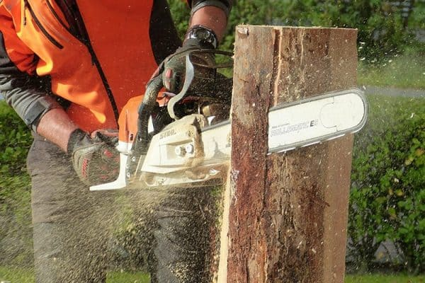 Best Chainsaw Chains for Hardwood